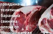 Реализуем охлаждённое мясо телятины