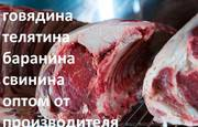 Реализуем охлаждённое мясо баранины